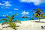 KO LIPE (เกาะหลีเป๊ะ) – pláže